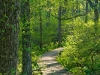 long-lake-trail_10