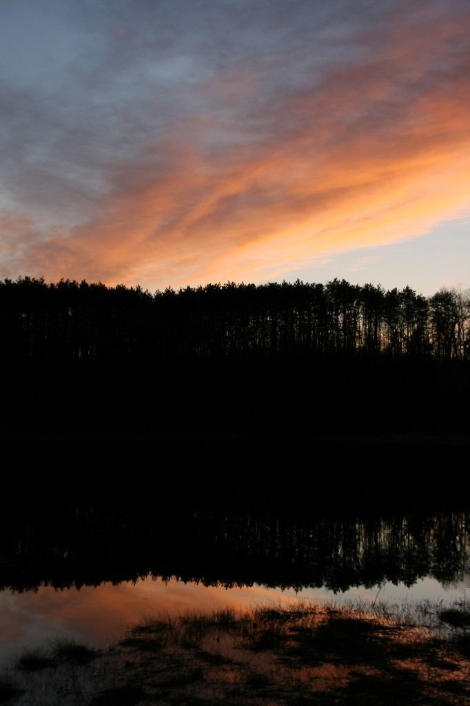 A plume of cirrus lights the sky at sunset at Shaw Lake in northern Barry County.